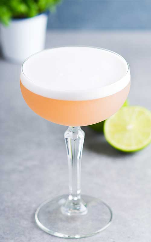 How to Make a Clover Club Cocktail