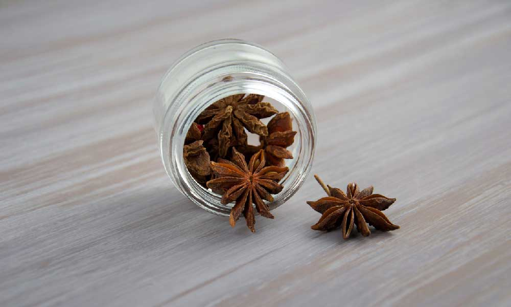 Anise Liqueurs - star anise in a bottle